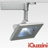 IGuzzini 4817.015 Parallel 150W metal halide projector RX7s Grey Binary