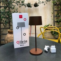 Ai Lati OLIVIA LED Table Battery Lamp USB Rechargeable For Outdoor