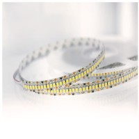 Lampo Strip LED 3528 240led/m 24V 19.2W/mt Reel 5 Meters 80W Flexible Excellent Quality