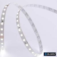 Strip Striscia LED SMD2835 98led/m 24V 10W 3000K 1060 lm Luce Calda IP65 - Bobina 5 mt
